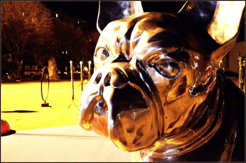 NINA Sculpture Chaland Vétérinaire Marseille