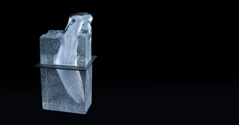 Darwin Sculpture Chaland Verre