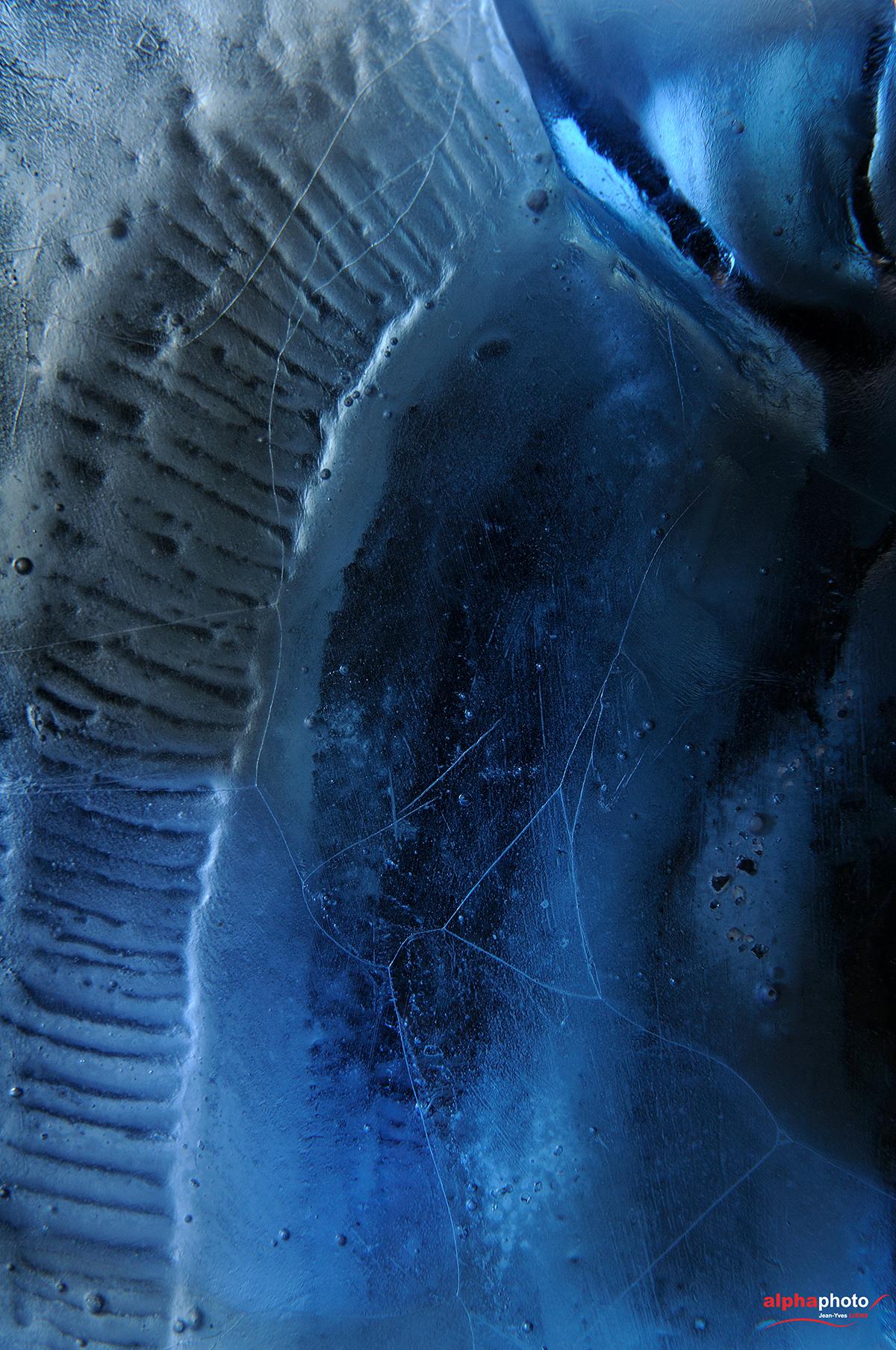 Cheval en verre - Sculpture de Patrick CHALAND